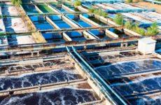 Принципы биологической очистки сточных вод
