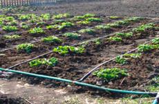 Полипропиленовые трубы для водопровода: виды, плюсы и минусы