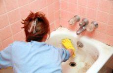 Плесень в ванной: причины возникновения, чем чревато появление, как избавиться
